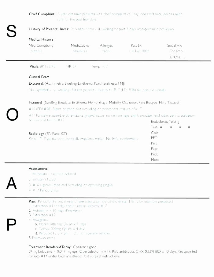 Soap therapy Note Template Lovely Printable Massage therapy soap Notes forms Note Blank