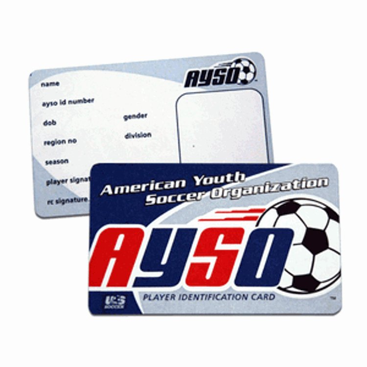 Soccer Player Cards Template Elegant Ayso Player Id Cards Pack Of 80