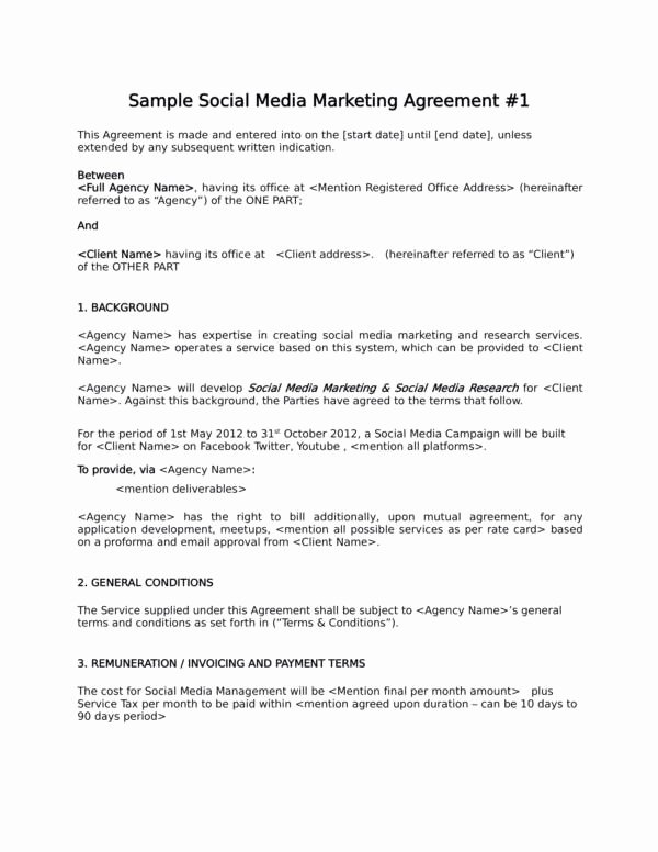 Social Media Marketing Contract Template Unique 12 Advertising and Marketing Agreement Template – Pdf