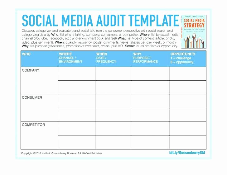 Social Media Plan Template Excel Elegant Media Plan Template Excel Free Download Get Sales Schedule