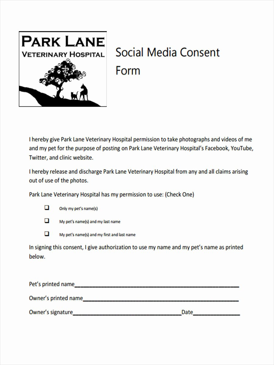 Social Media Release form Template Beautiful 8 Media Consent form Samples Free Sample Example