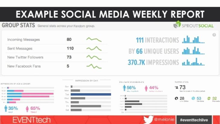 Social Media Reporting Template Elegant social Media Report Template social Media Weekly