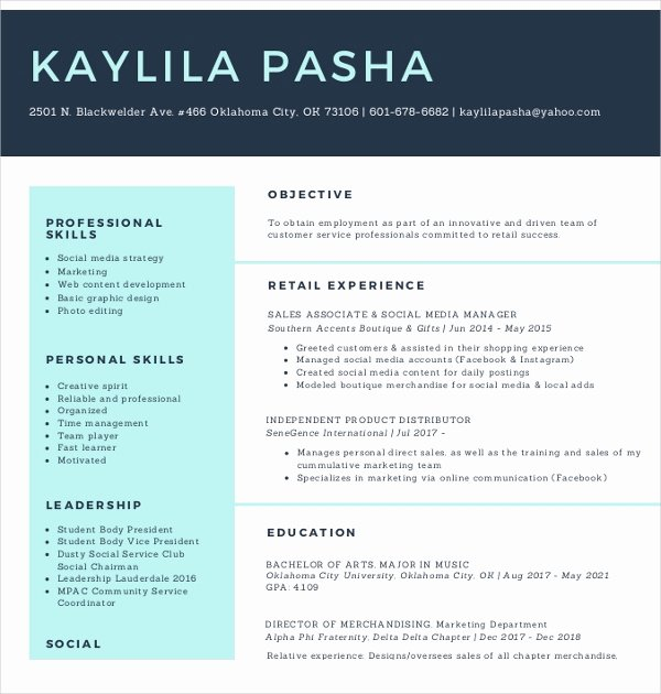 Social Media Resume Template Lovely 15 social Media Resumes Templates Pdf Doc