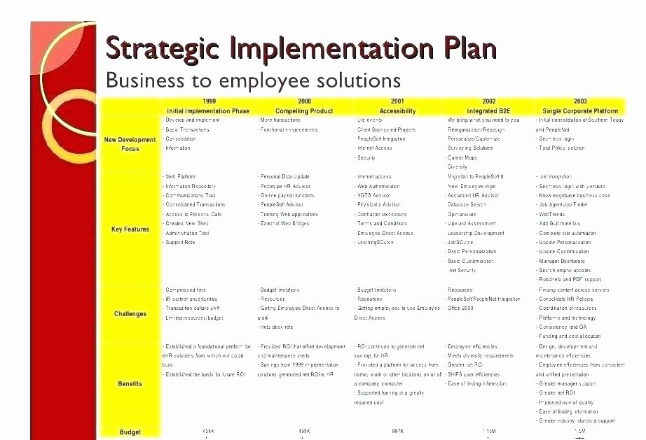 Software Implementation Plan Template Excel Fresh Business Plan Strategy and Implementation Sample Business