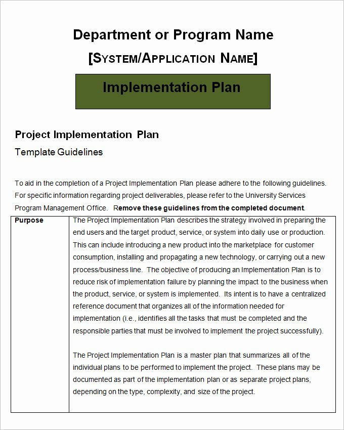 Software Implementation Plan Template Inspirational Project Implementation Plan Template 5 Free Word Excel