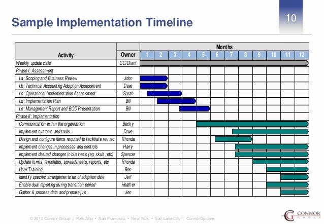 Software Implementation Project Plan Template Fresh Business Plan Implementation Timeline Best Essays