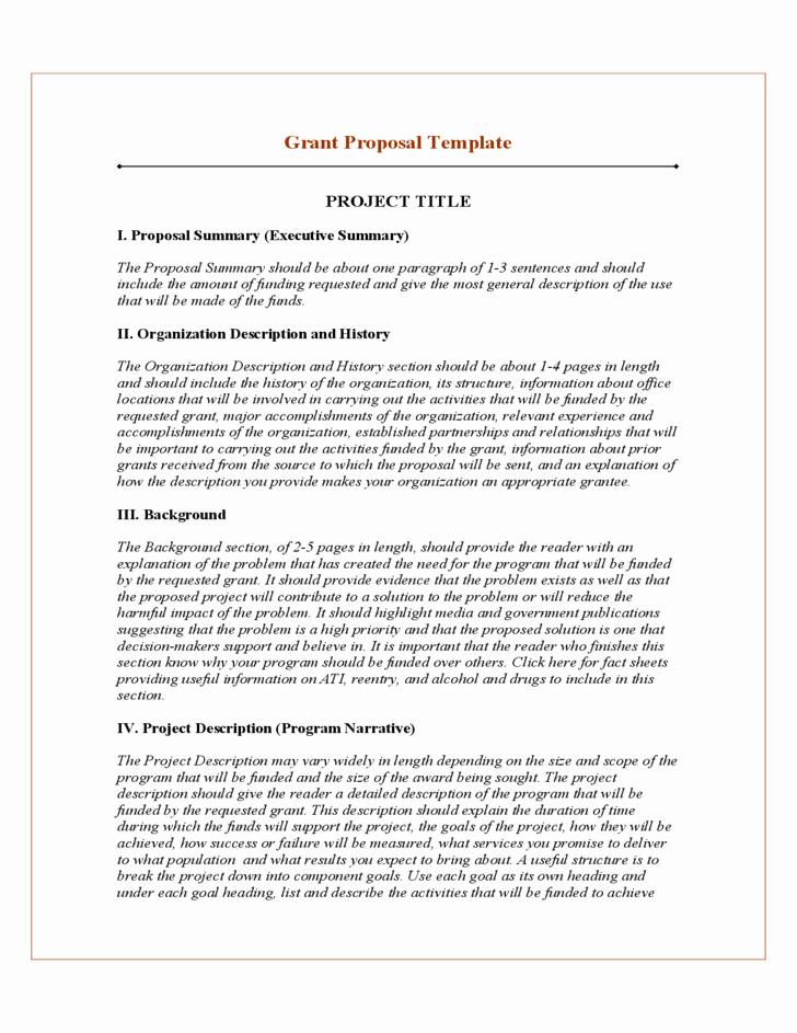 Software Project Proposal Template Beautiful 20 Free Project Proposal Template Ms Word Pdf Docx