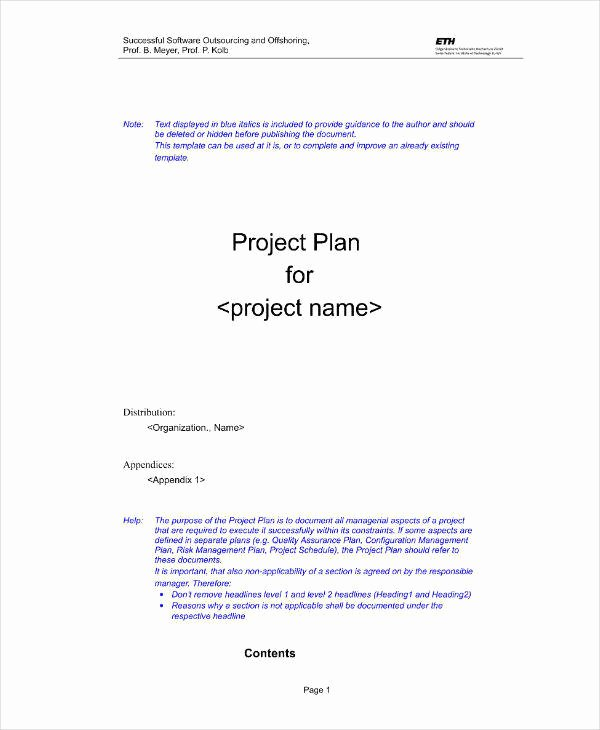 Software Project Proposal Template Luxury 11 software Project Proposal Templates & Samples Pdf