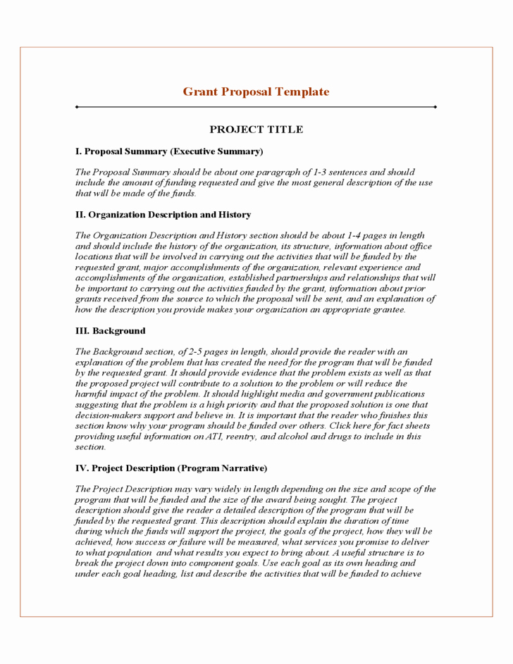 Software Proposal Template Word Fresh 20 Free Project Proposal Template Ms Word Pdf Docx