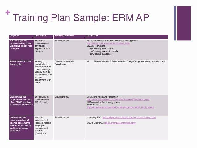 Software Training Plan Template Unique Employee Development Plans Templates