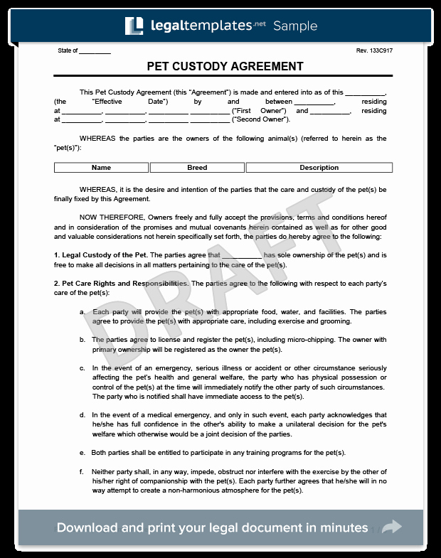 Sole Custody Agreement Template Best Of Pet Custody Agreement
