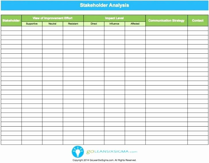 Stakeholder Analysis Template Excel Best Of Stakeholder Analysis Template Excel Project Management Gap