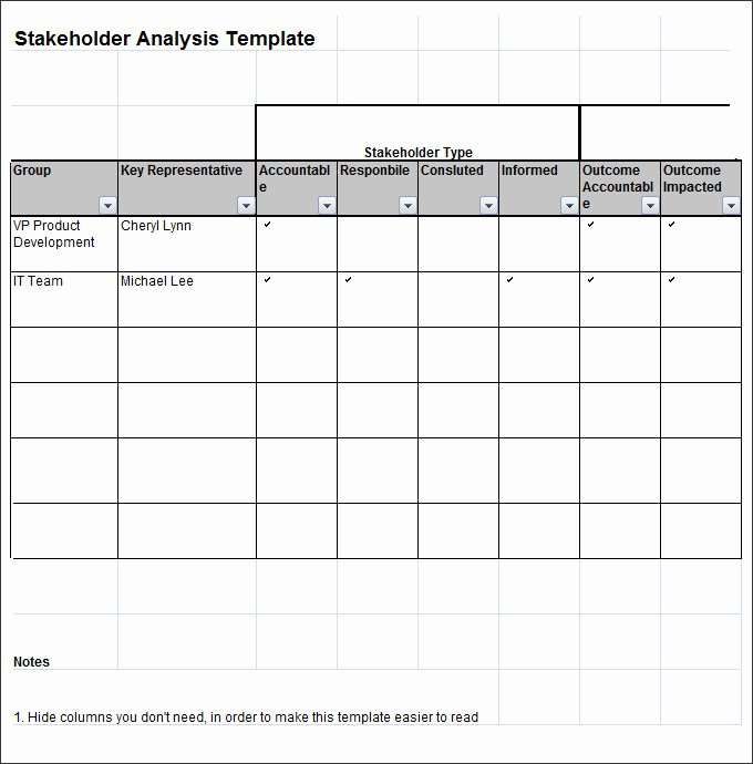 Stakeholder Analysis Template Excel Luxury Stakeholder Analysis Template 8 Free Word Excel Pdf