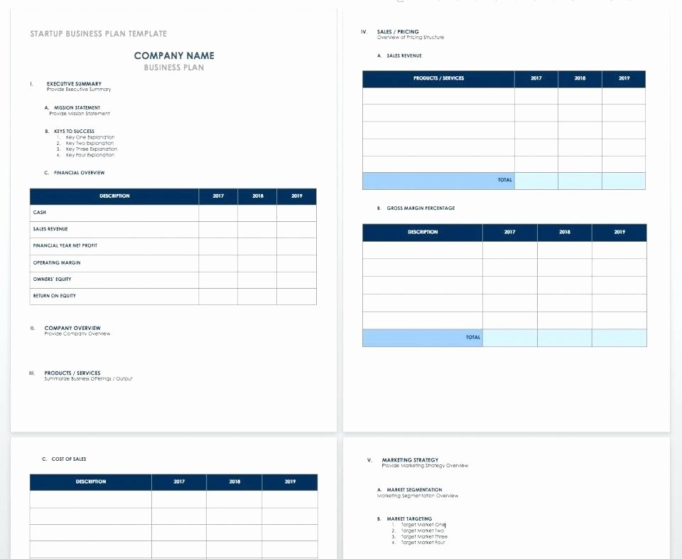 Start Up Cost Template Lovely Business Setup Cost Template Start Up Costs Plan for A