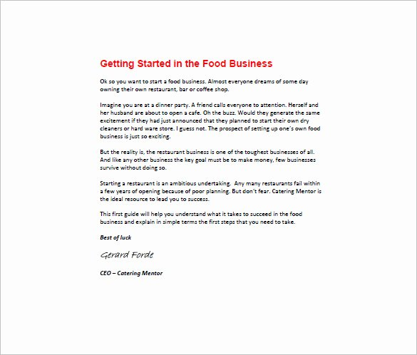 Startup Business Plan Template Excel Lovely Startup Business Plan Template 19 Word Excel Pdf