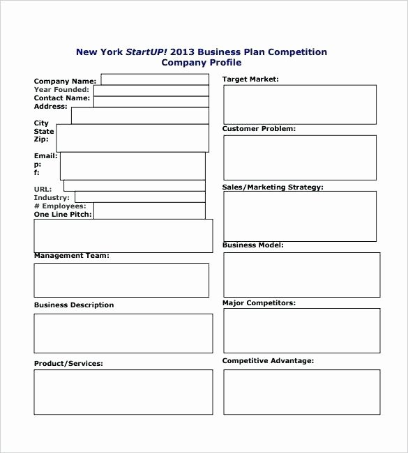 Startup Business Plan Template Excel Lovely Startup Plan Template Personal Startup Business Plan