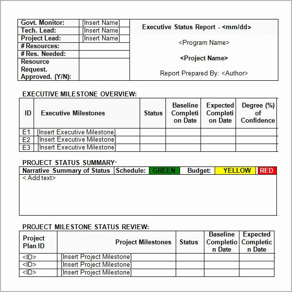 Status Report Template Excel Lovely Sample Status Report Template 7 Free Documents Download