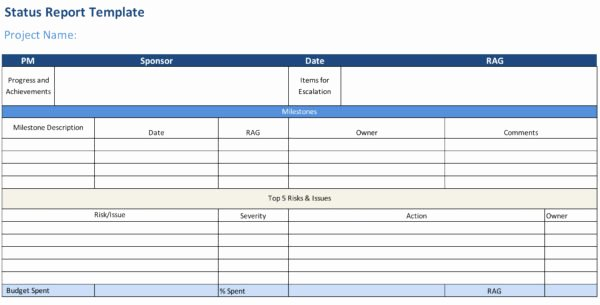 Status Report Template Excel New Status Report Template Projectmanager