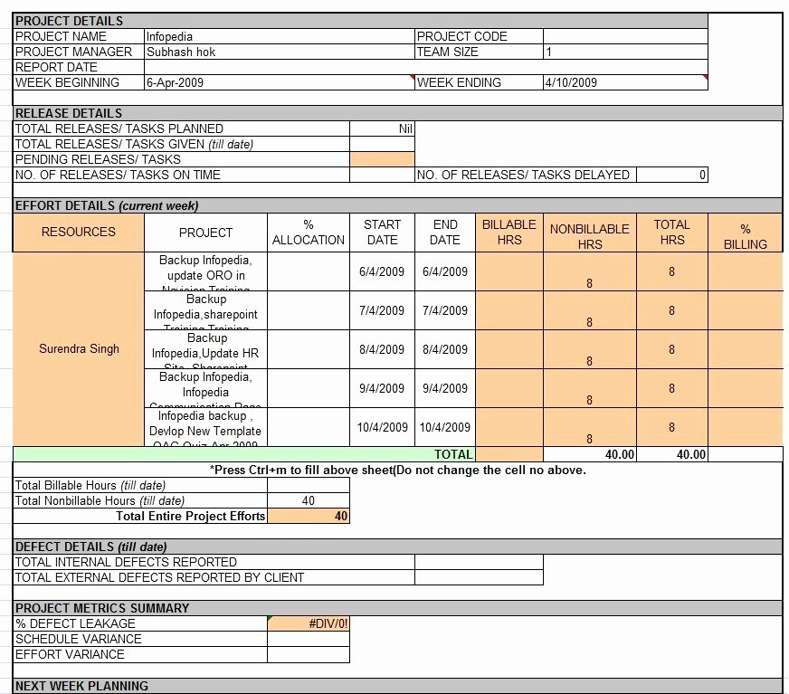 Status Report Template Excel New Weekly Status Report Template Professional Business