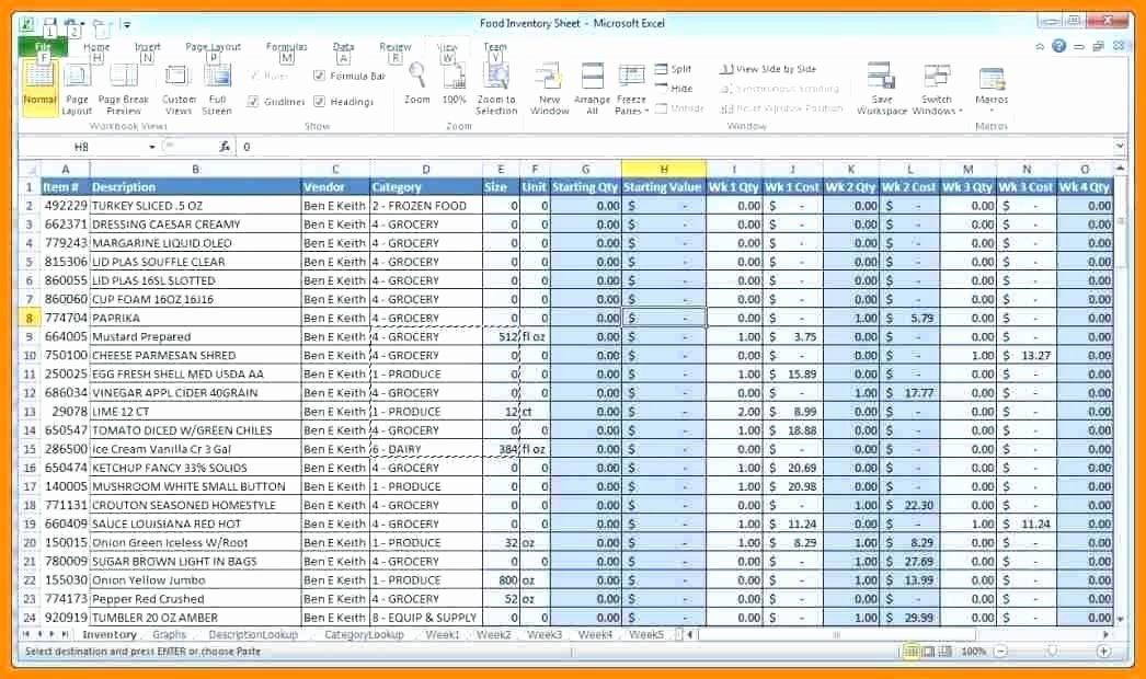 Stock Inventory Excel Template Unique Inventory Record format In Excel Stock Record Template