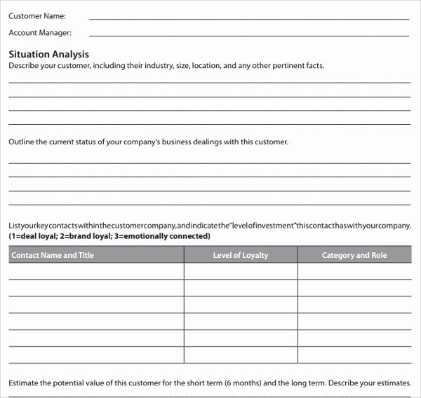 Strategic Account Planning Template Elegant 13 Account Plan Templates