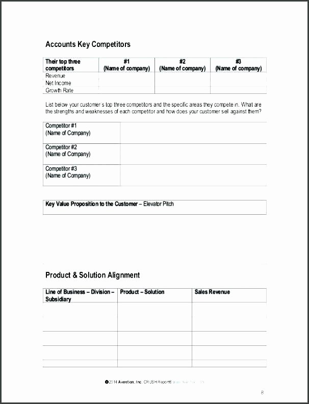 Strategic Account Planning Template Elegant Account Plan Example Template Development Key Management