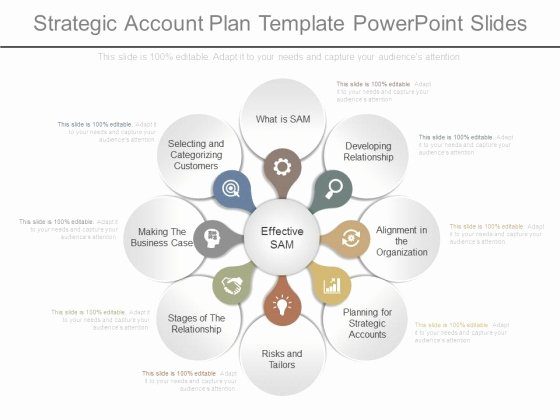 Strategic Account Planning Template Fresh Strategic Account Plan Template