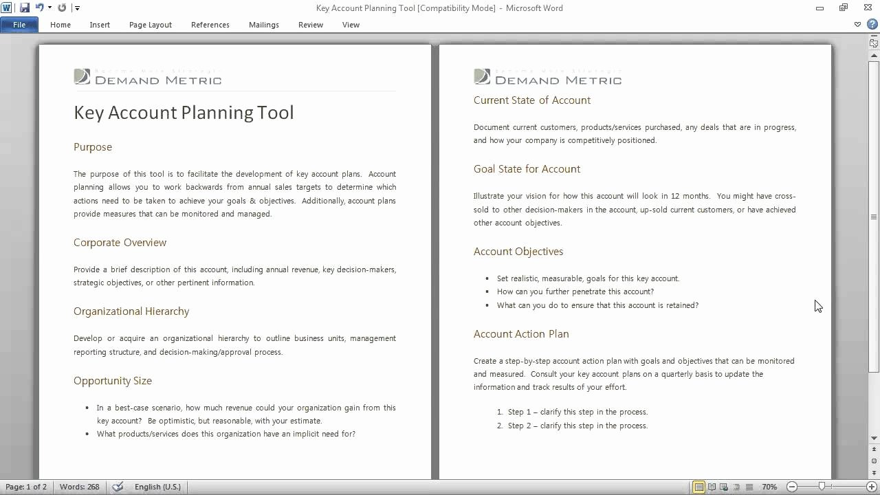 Strategic Account Planning Template Inspirational Key Account Planning tool