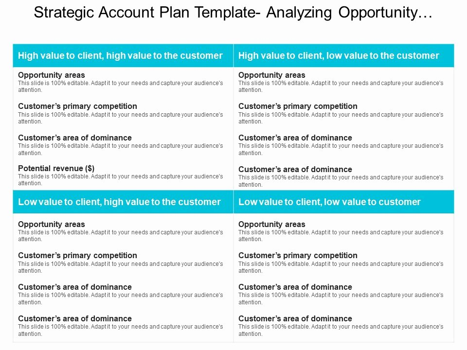 Strategic Account Planning Template Unique Strategic Account Plan Template Analyzing Opportunity