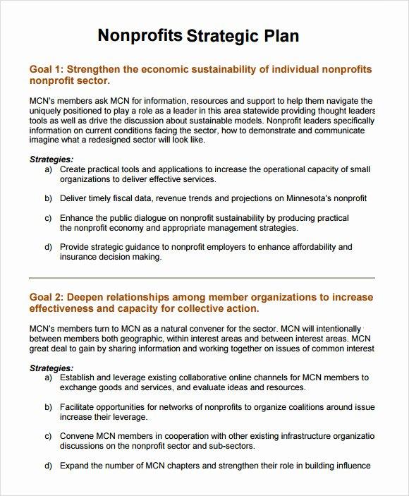 Strategic Business Plan Template Elegant 11 Non Profit Business Plan Samples