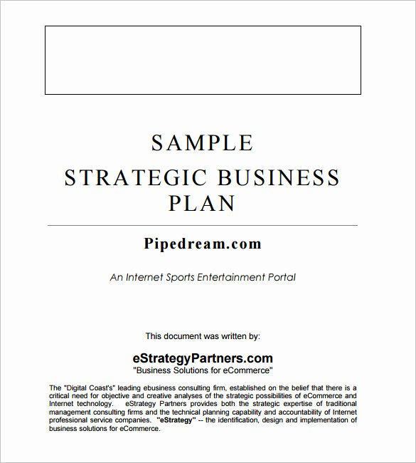 Strategic Business Plan Template Luxury Strategic Business Plan Template 9 Free Word Documents