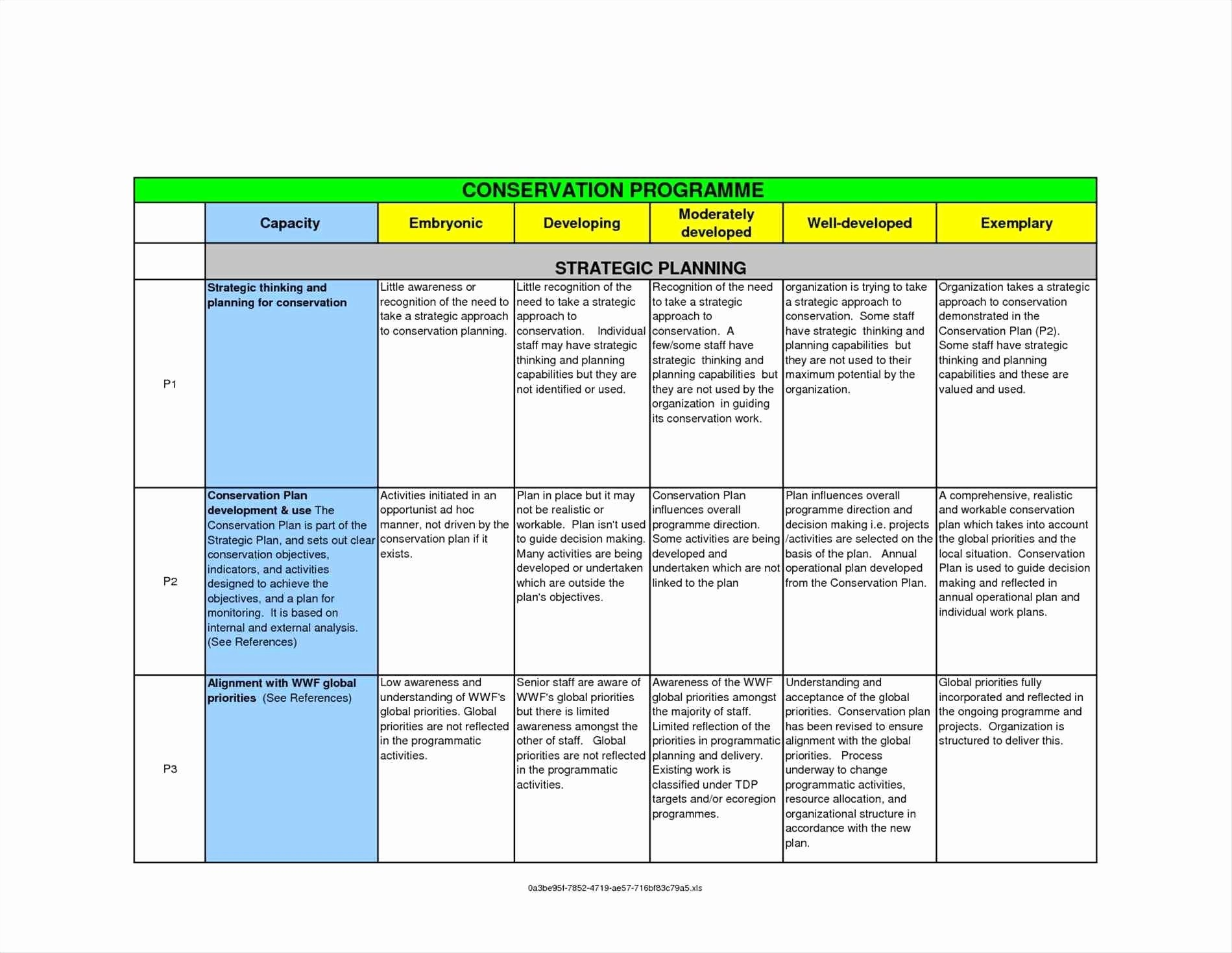 Strategic Communication Plan Template Unique Munication Strategy Template Beepmunk