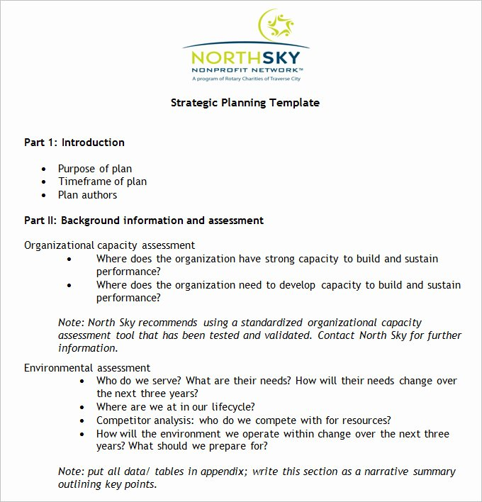 Strategic Planning for Nonprofits Template Fresh Non Profit Strategic Plan Template Free Word Pdf