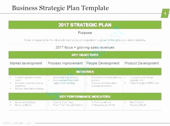 Strategic Planning Nonprofit Template Beautiful Strategy Plan Planning Template 1 Page Strategic Example