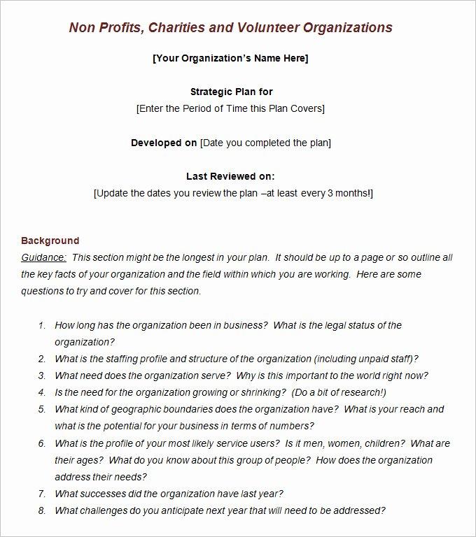 Strategic Planning Nonprofit Template Elegant 4 Sample Non Profit Strategic Plan Templates Word Pdf