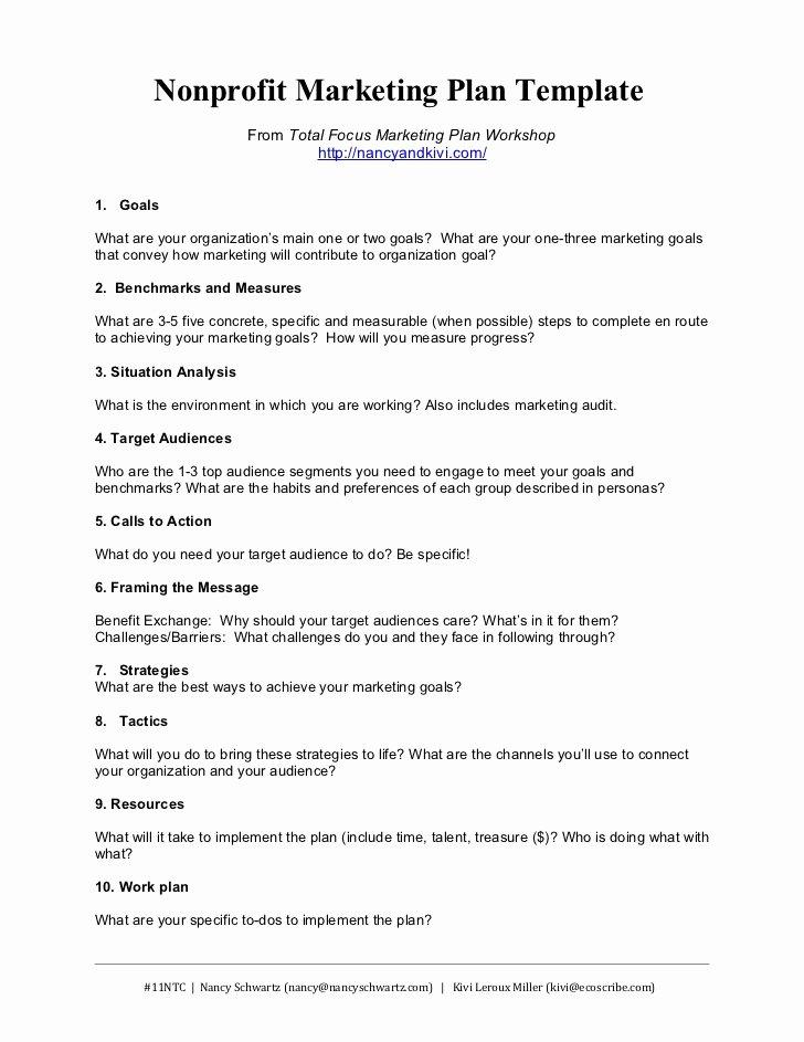 Strategic Planning Nonprofit Template New Nonprofit Marketing Plan Template Summary