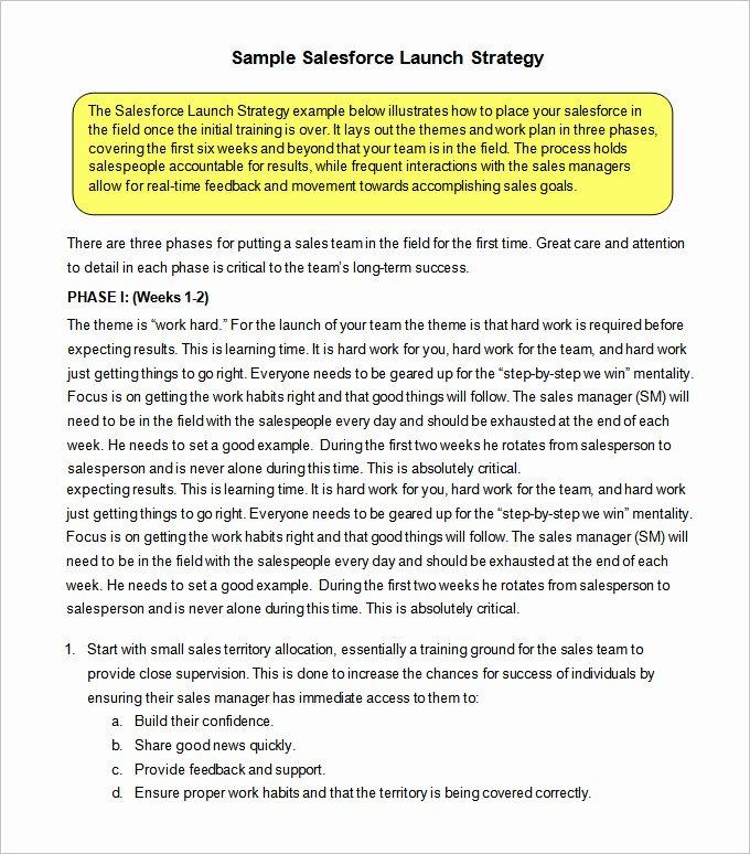 Strategic Sales Plan Template Best Of 12 Sales Strategy Templates Doc Pdf