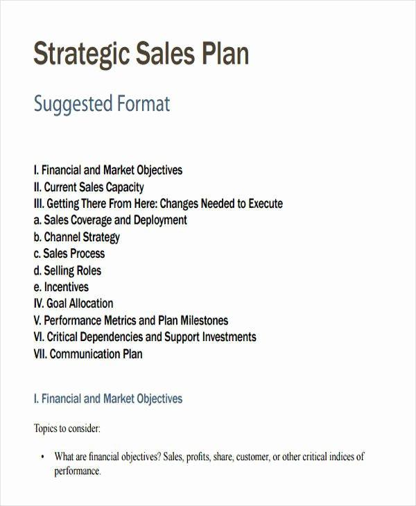 Strategic Sales Plan Template Best Of 27 Sales Plan Examples