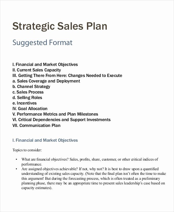 Strategic Sales Planning Template Lovely Personal Sales Plan Templates 5 Free Pdf format