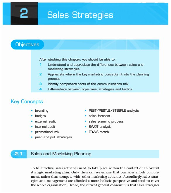 Strategic Sales Planning Template Unique 13 Sales Strategy Template Doc Excel Pdf