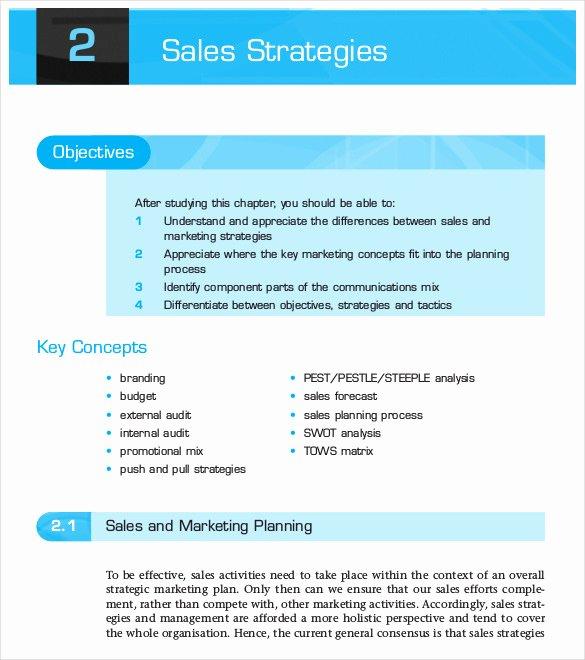 Strategic Sales Planning Template Unique 13 Sales Strategy Template Doc Excel Pdf