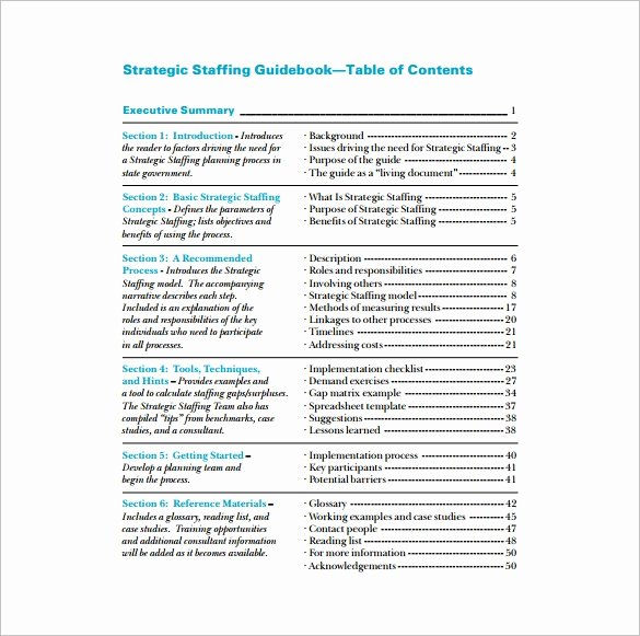 Strategic Staffing Plan Template New 8 Staffing Plan Template Pdf Doc Xlsx