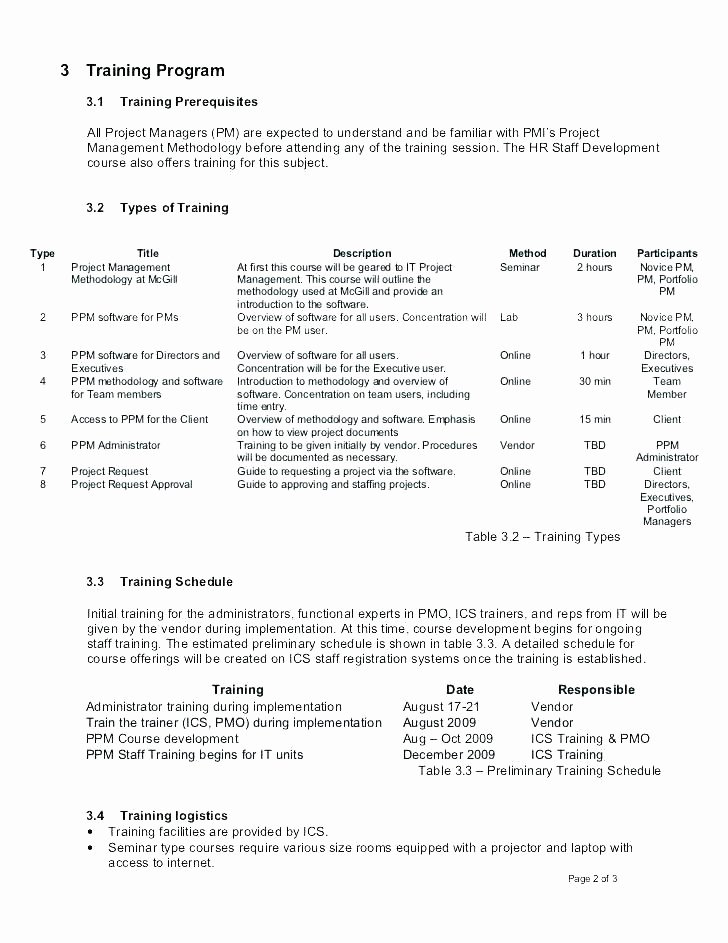 Strategic Staffing Plan Template New Staffing Plan Template