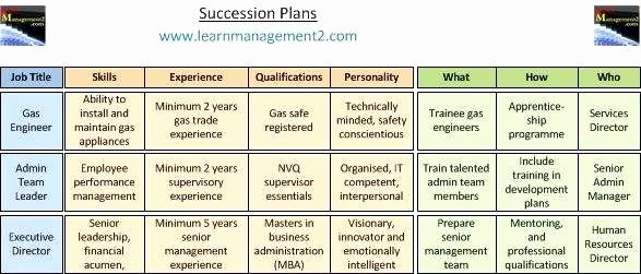 Succession Planning Template Excel Inspirational Succession Planning Template Excel Readleaf Document