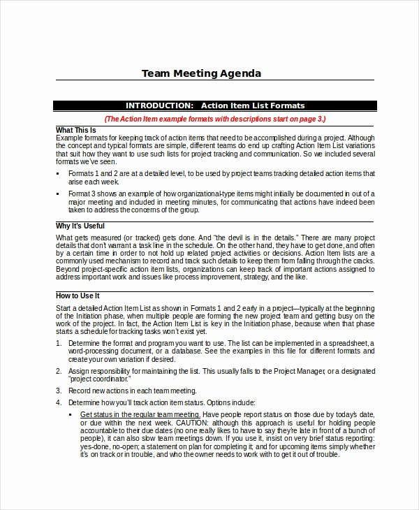 Team Meeting Agenda Template New Project Agenda Template 6 Free Word Pdf Documents