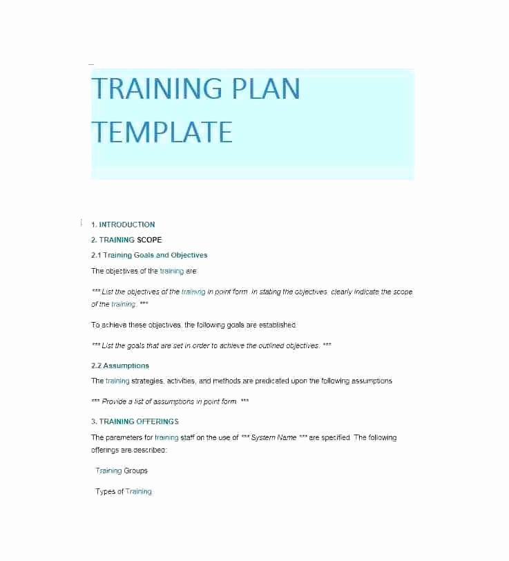 Template for Training Manual Beautiful Employee Manual Templates Template Pany Policy Examples