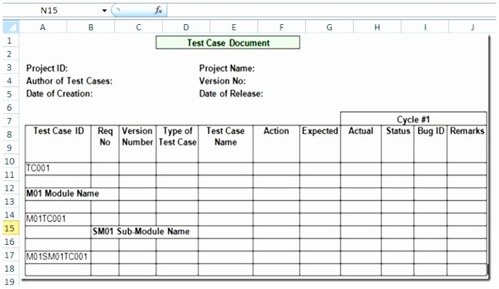 Test Case Template Excel Beautiful 12 Test Cases Excel Template Tawxh