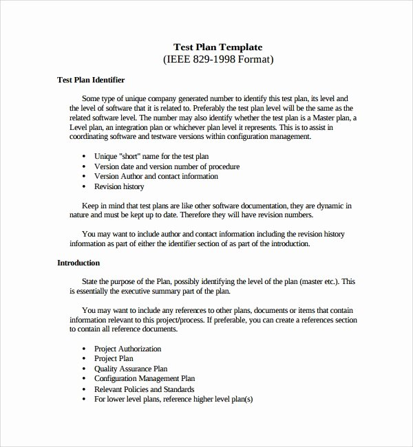 Test Plan Template Word Beautiful 9 Testing Plan Templates