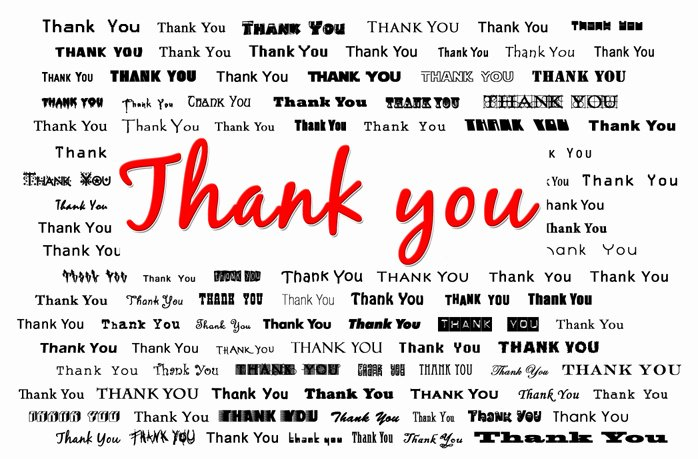 Thank You Card Template Word Awesome Arief Singo formal Thank You Letter Template