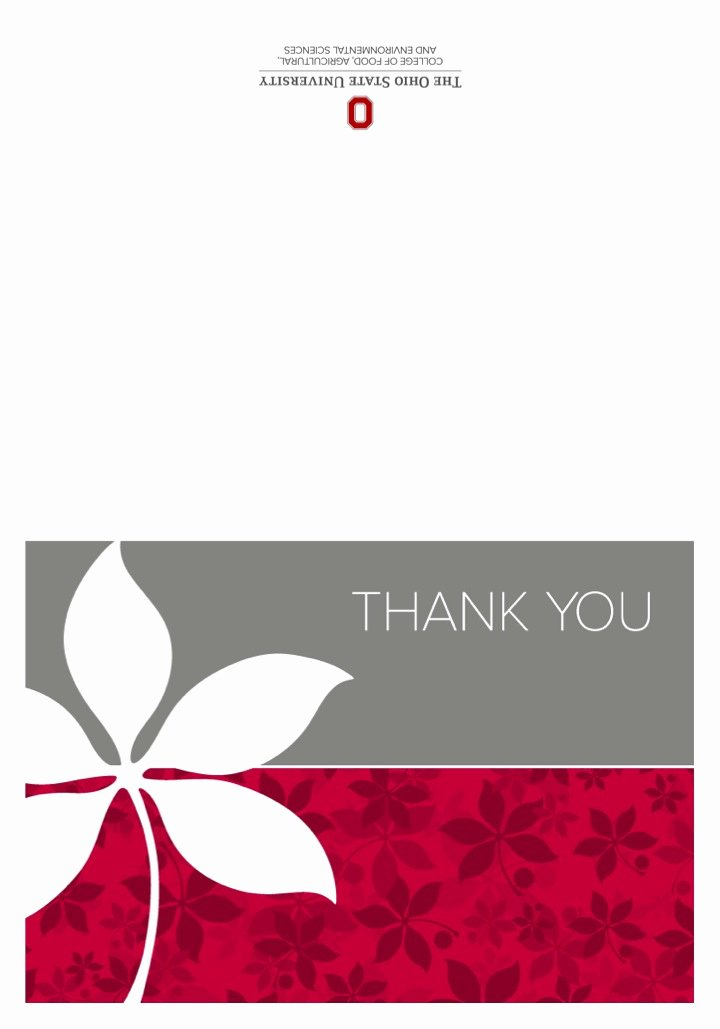Thank You Cards Template Lovely Thank You Card Templates